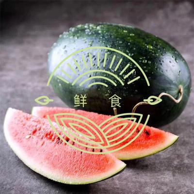 广西崇左凭祥市黑美人西瓜 有籽 2茬以上 8成熟 7斤打底
