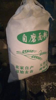宁夏固原原州区普通荞麦