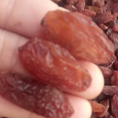 新疆吐鲁番吐鲁番市红香妃葡萄干 一等