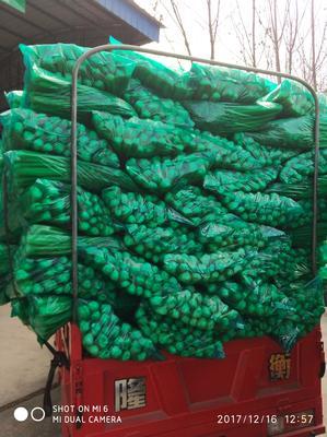 四川省成都市彭州市塑料袋