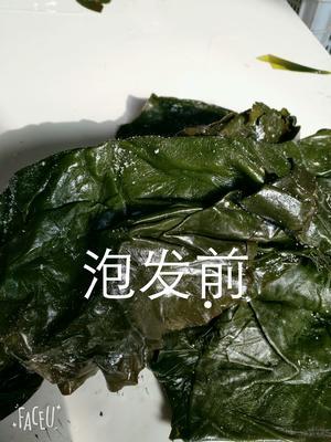 山东聊城东昌府区盐渍海带