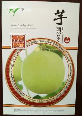 山东烟台莱阳市芋香冬瓜 0.8~1.2斤 硬毛