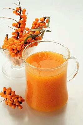 黑龙江大兴安岭大兴安岭地区加格达奇区沙棘果 橙黄色