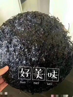 浙江温州洞头县头水紫菜