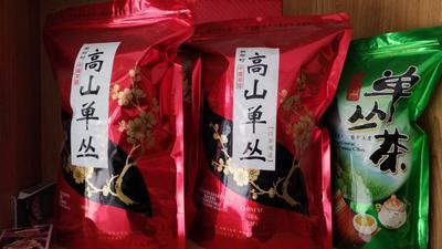 广东梅州大埔县单枞茶 袋装 一级