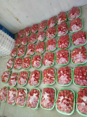 辽宁省丹东市东港市九九草莓 40克以上