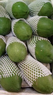 广西南宁江南区红心木瓜 1 - 1.5斤