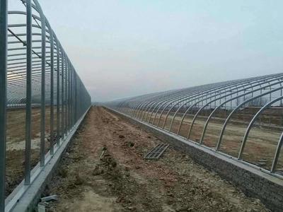 河北沧州南皮县大棚钢管