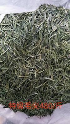 贵州黔西兴义市贵州高山茶 散装 一级
