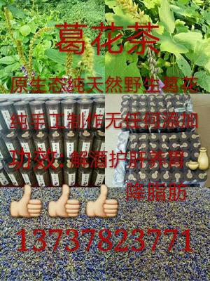 广西壮族自治区梧州市藤县葛花