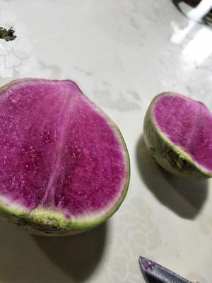 山东省济南市平阴县心里美萝卜 1~1.5斤