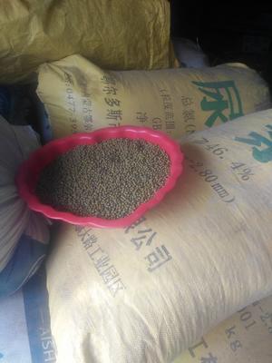 内蒙古兴安科尔沁右翼前旗绿杂豆 散装 2等品