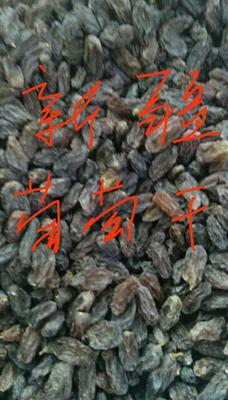 新疆阿克苏柯坪县玫瑰香葡萄干 优等