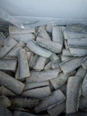 河北沧州南皮县东海带鱼 野生 0.5公斤以下