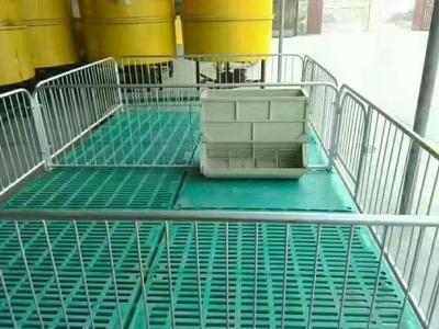 安徽宿州埇桥区母猪产床