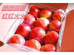 山东枣庄峄城区枣庄石榴 1斤 - 2斤
