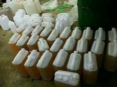 广西壮族自治区河池市凤山县野生山茶油