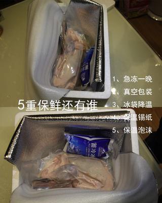 上海浦东新白鲳 野生 0.5龙8国际官网官方网站以下