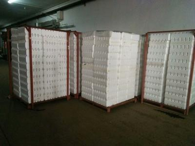 山东烟台福山区红提 5%以下 1次果 1-1.5斤