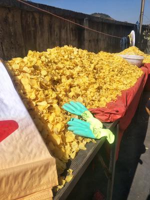 贵州六盘水盘县干土豆片 24个月以上