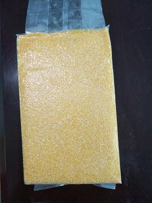 河南洛阳新安县先玉335玉米粒 霉变≤1% 净货