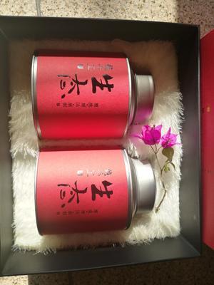 福建泉州南安市金秋葵果茶富贵病的克 礼盒装 1-2年 特级