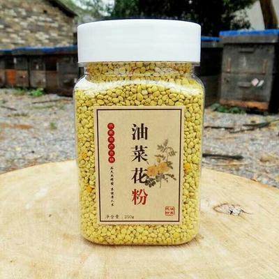 安徽安庆岳西县油菜花粉 12-18个月