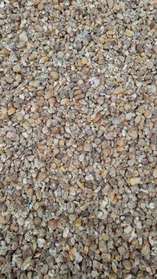 安徽阜阳太和县碎玉米 霉变≤1% 净货