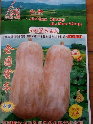 湖北襄樊宜城市蜜本南瓜种子 85%