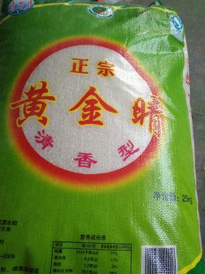 河南濮阳濮阳县原阳大米 绿色食品 晚稻 一等品