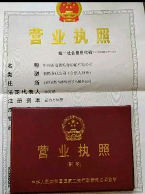 河北邯郸丛台区玉米干粮 霉变≤1% 净货