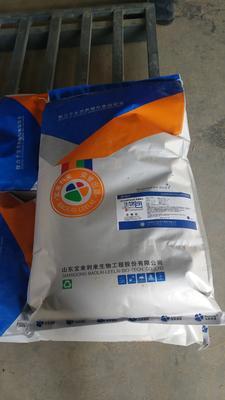 山东省泰安市泰山区微生物饲料添加剂