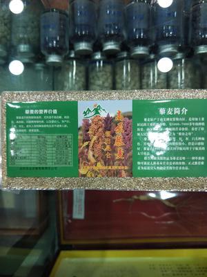 青海西宁城东区白藜麦