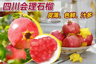 四川凉山会理县会理石榴 0.8 - 1斤