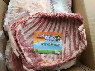广东深圳龙岗区羊排 12-18个月 生肉