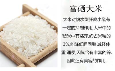 安徽蚌埠固镇县有机富硒米 有机大米 晚稻 一等品