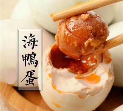 广西南宁西乡塘区海鸭蛋 食用 箱装