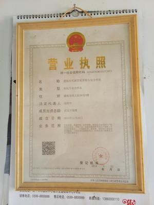 广西桂林恭城瑶族自治县银星竹鼠苗