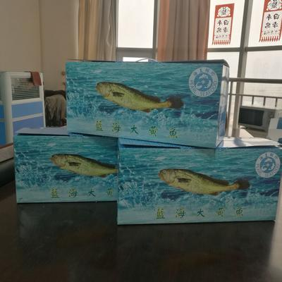 天津西青大黄鱼 人工殖养 0.5公斤以下