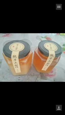 河南新乡辉县市土蜂蜜 玻璃瓶装 98% 2年以上