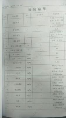 湖北恩施土鹤峰县青钱柳茶 袋装 1-2年 特级