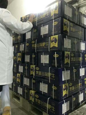 江苏扬州广陵区牛肉卷 6-12个月 简加工