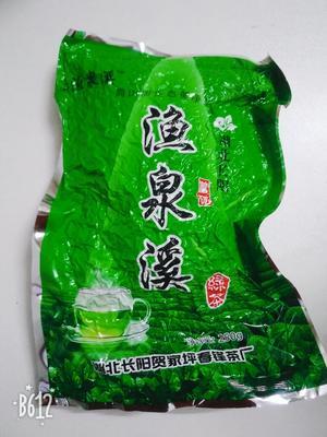 这是一张关于长阳绿茶 袋装 一级的产品图片