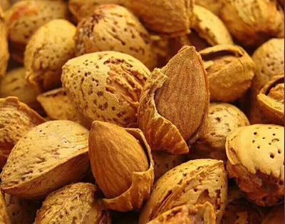这是一张关于巴旦木 1年以上 带壳的产品图片