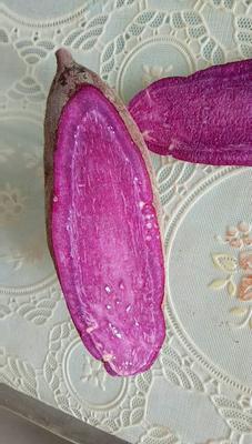 山东济宁市中区紫罗兰紫薯 3两以上