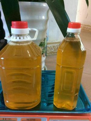 湖南长沙宁乡县压榨一级山茶油 5L