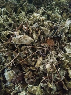 云南西双版纳勐海县野生藤茶 散装 恒温长期保存 特级