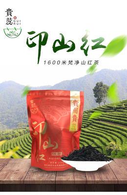 广东深圳龙岗区梵净山红茶 袋装 一级 【优质年货】