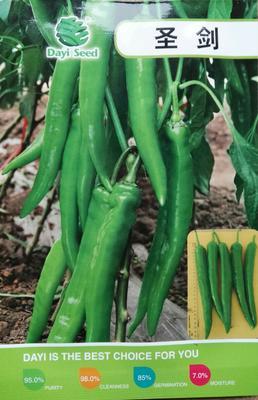 这是一张关于圣剑大果型牛角椒 95%以上 杂交种的产品图片