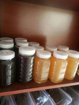 陕西渭南澄城县洋槐蜂蜜 塑料瓶装 100% 1年